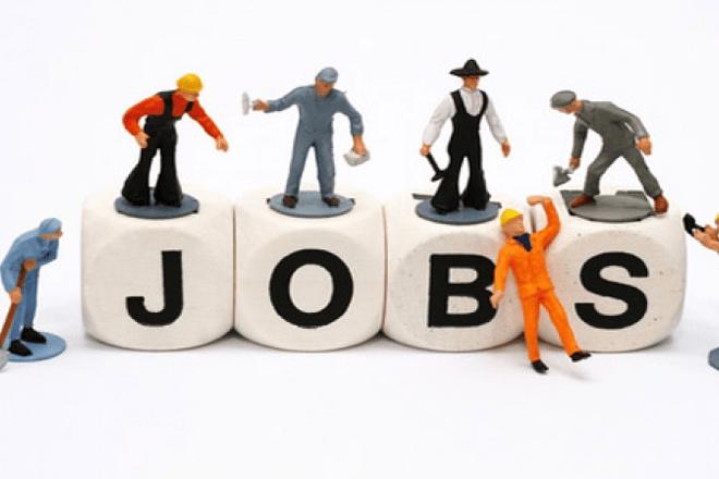 Chiến lược lựa chọn nghề nghiệp phù hợp