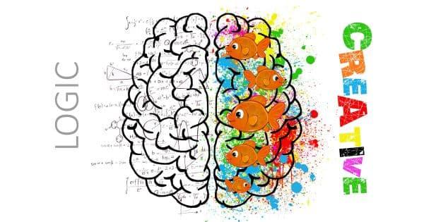 Cách nhận biết bạn thuận não trái hay não phải